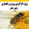 دانلود پروژه کارآفرینی پرورش و نگهداري زنبور عسل