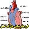 طرح جابر با موضوع شگفتی های قلب انسان