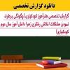 گزارش تخصصی هنرآموز کودکیاری (چگونگی برطرف نمودن مشکلات اخلاقی رفتاری زهرا دانش آموز سال دوم کودکیاری)