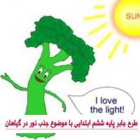 طرح جابر پایه ششم ابتدایی با موضوع جذب نور در گیاهان