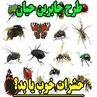 طرح جابر با موضوع حشرات خوب یا بد