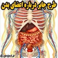 طرح جابر درباره اعضای بدن