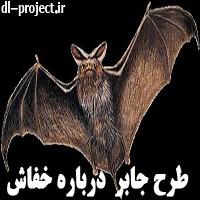 طرح جابر درباره خفاش