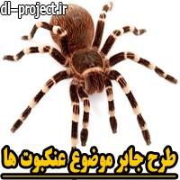 طرح جابر با موضوع عنکبوت ها