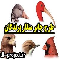 طرح جابر با موضوع منقار پرندگان