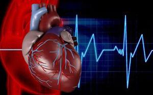 تحقیق قلب و عروق و پیشگیری از بیماری های مربوط به آن پودمان جمعیت،بهداشت و فوریت های پزشکی در خانه
