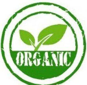 دانلود مقاله اهمیت تغذیه ارگانیک در کشاورزی