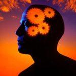 تحقیق نقش و تاثیر تفکر سیستمی در مدیریت خانه