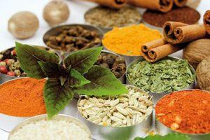 دانلود رایگان بانک اطلاعات خواص دارویی و خصوصیات اقلیمی گیاهان دارویی