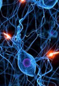 دانلود رایگان مقاله سیستم های مبتنی بر شبکه عصبی