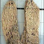 تحقیق بررسی علل و میزان ضایعات آرد و نان های مختلف