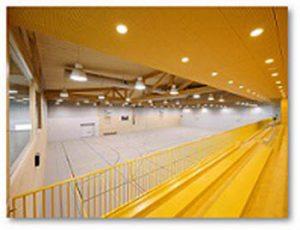 دانلود پروژه محوطه سازی مکانهای ورزشی