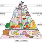 طرح جابر با موضوع هرم غذایی